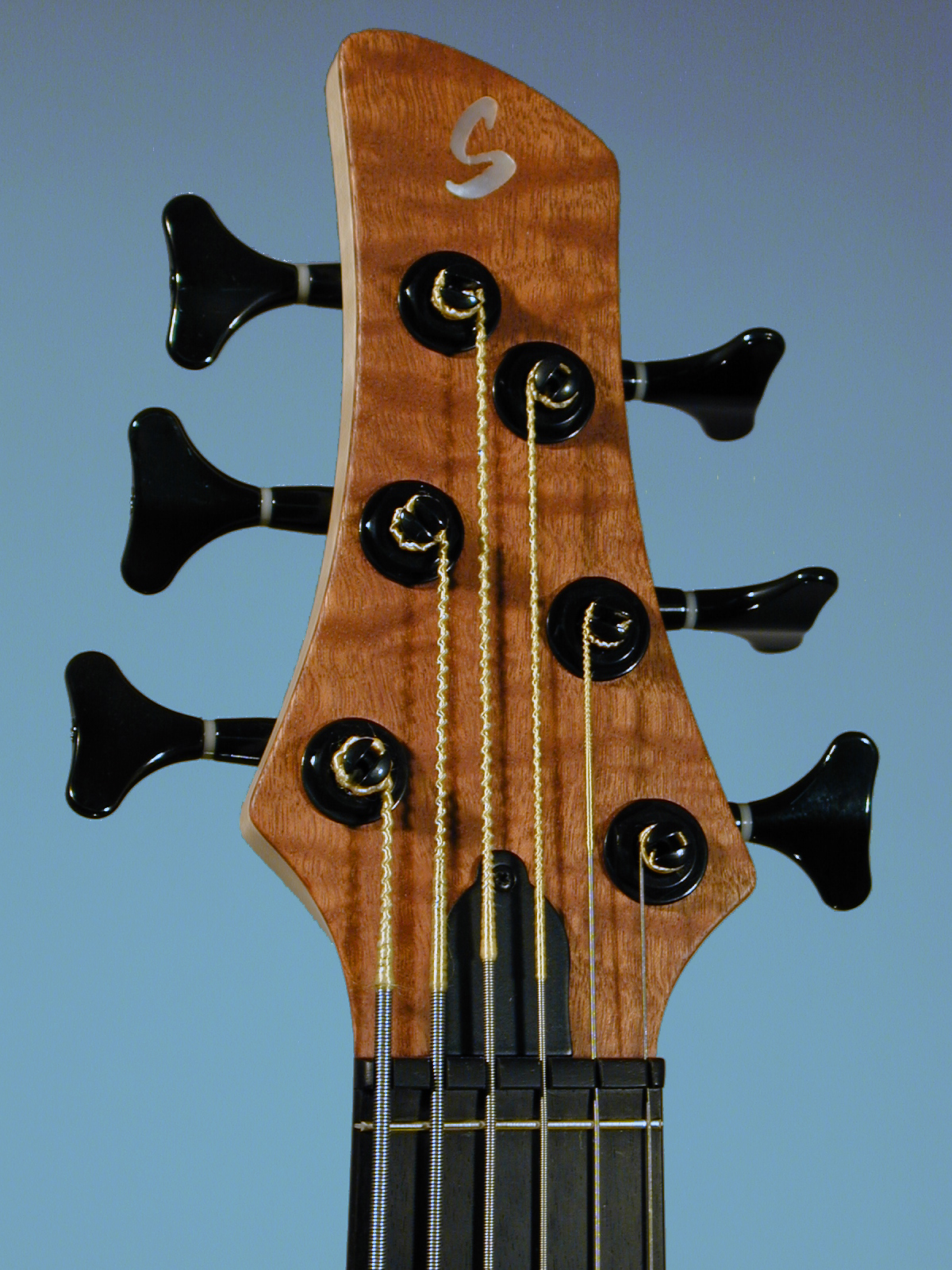 Schack Unique VI Fretless Sapeli Headstock